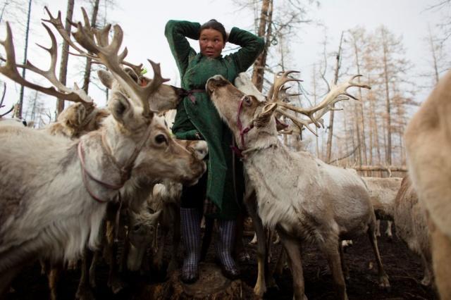Moğolistan'ın kuzeybatısında yaşayan Türk kökenli Duha halkı, ren geyiği çobanlığı yaparak teknolojiden uzak, tamamen doğal yaşam tarzını sürdürüyor.