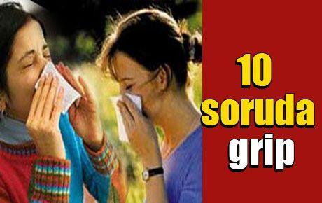 10 soruda grip