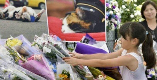'İstasyon şefi' kediye görkemli cenaze töreni