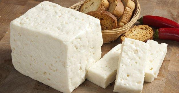 Çeşitli Peynirlerin Çeşitli Faydaları