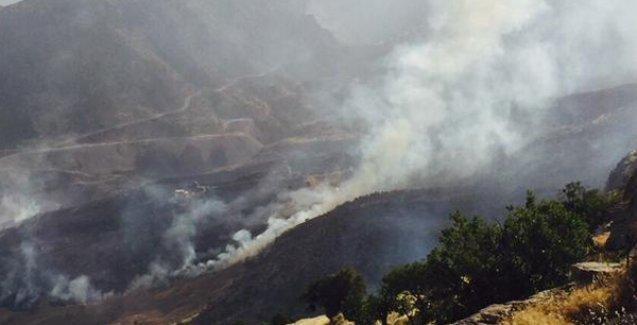 'Cudi yanar, Türkiye'nin çevrecileri bakar!'