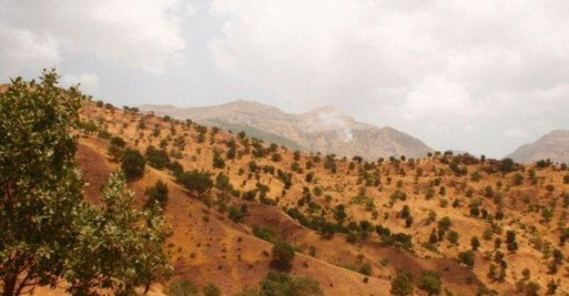 Diyarbakır'dan kalkan savaş uçakları Hakurk ve Haftanin'i vuruyor