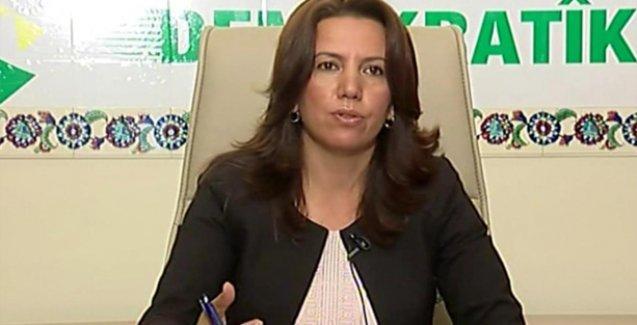 HDP'li Irmak: Başarısızlıklarını savaşla gidermeye çalışıyorlar