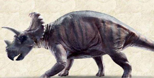 Kanada'da 79 milyon yıllık dinozor fosili bulundu