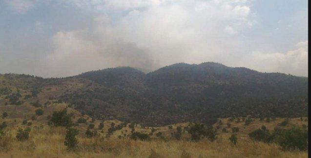 PKK'den 'yangın' açıklaması: Türk ordusu doğa katliamı yapıyor