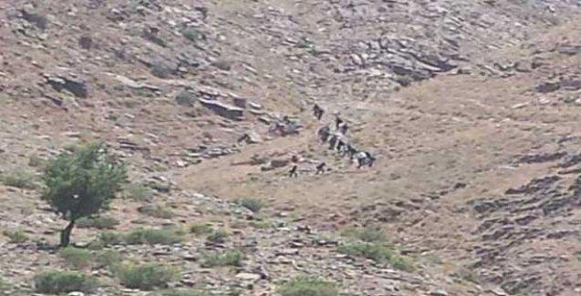 Sınırda asker müdahalesi, gözaltılar var