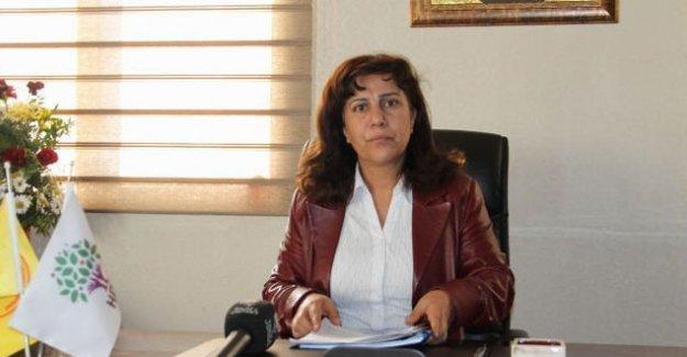 DBP Diyarbakır İl Eş Başkanı Hafize İpek tutuklandı