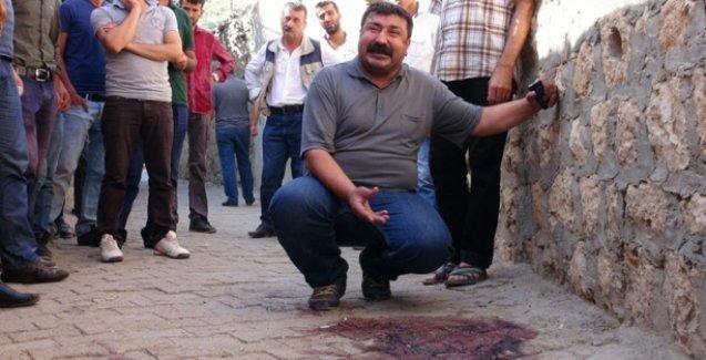 Şırnak ve Mardin'de 2 genç öldürüldü
