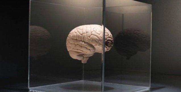 Beyni yaşlanmaktan korumanın altı yolu
