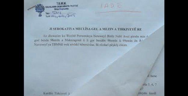 Kürtçe önergesi reddedilen HDP'li Yıldırım: Demek ki yıllarca 'bilinmeyen bir dilin' Kürdologu olmuşum
