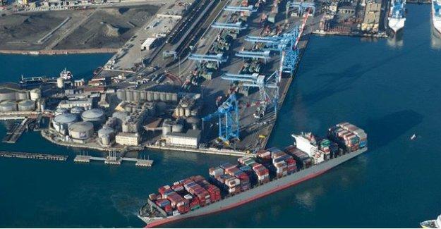 'Derince Limanı'nı dolguyla büyütmek deniz ekosistemini bozar'