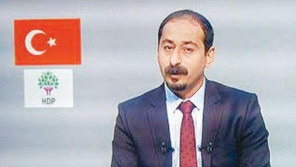 HDP adayı Mustafa Sarısülük TRT'de konuştu, Gezi'yi anlattı
