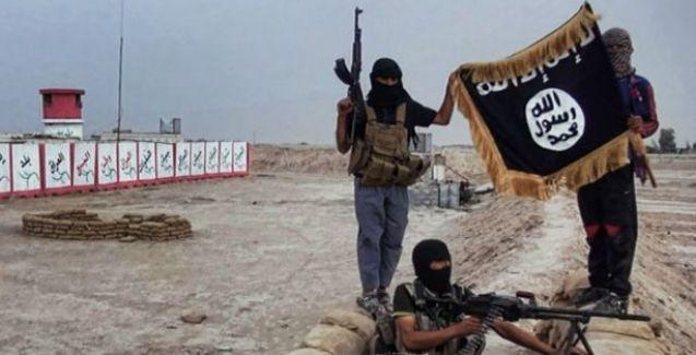 Siyasal İslam uzmanı Prof. Olivier Roy: Kimse gerçekte IŞİD'le mücadele etmiyor
