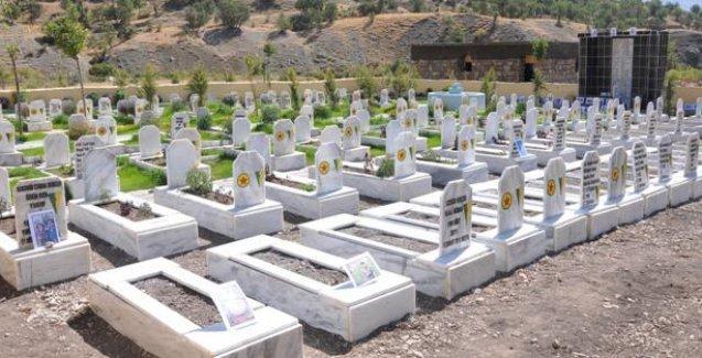 Türk savaş uçakları Pervari'de PKK'lilerin mezarlarını bombaladı