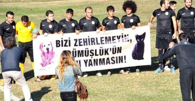 Gümüşlük Gençlikspor, sokak hayvanlarının zehirlenmesini protesto etti