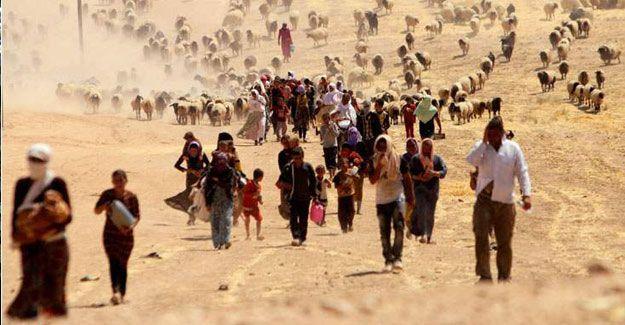 IŞİD'in serbest bıraktığı 9 yaşındaki Ezidi çocuk hamile
