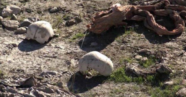 Şengal yakınlarında 110 Ezidi'nin gömülü olduğu toplu mezar bulundu