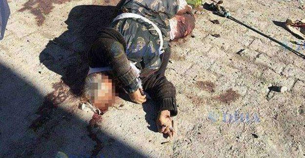 1 haftalık işkencenin fotoğrafı