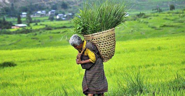 Bhutan, dünyanın ilk organik ülkesi