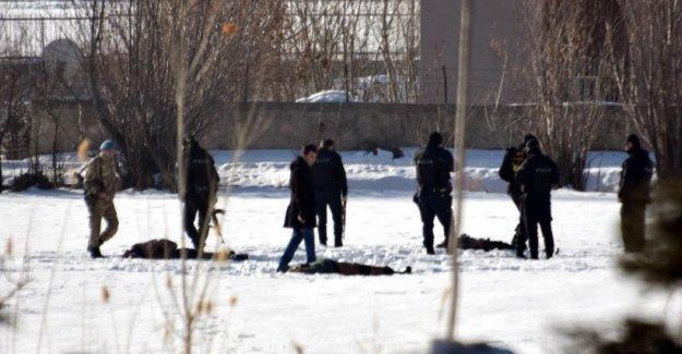 HDP'li Öztürk Van'da 12 gencin öldürülmesini Bakan Ala'ya sordu