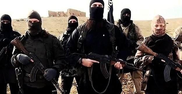 Fisk: IŞİD, Türkiye'de devlete sızmış gibi görünüyor
