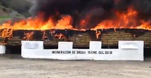 Meksika'da 20 tondan fazla uyuşturucu yakıldı