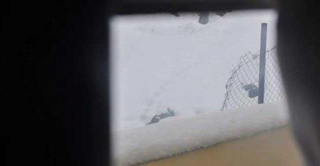 Şırnak'ta iki gencin cenazesi kar altında