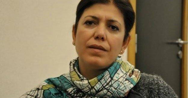 """""""AKP iktidarı, Ergenekon ve Balyoz'da uzlaşınca beraat kararları verildi"""""""