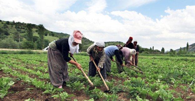 Dünyanın kadın çiftçileri Türkiye'de toplanıyor