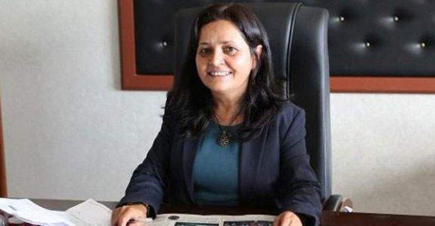 Silopi Belediye Eşbaşkanı gözaltına alındı