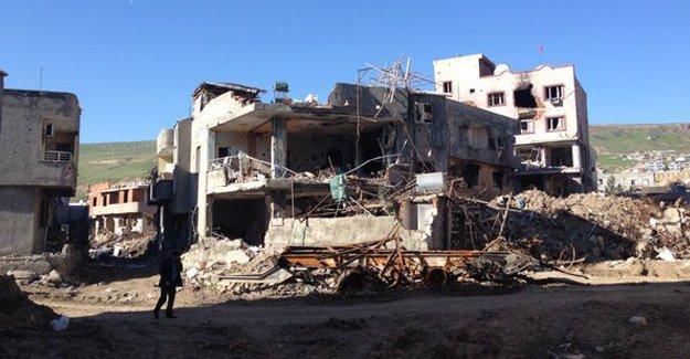 Cizre'de katledilen 12 kişinin otopsi sonuçları ortaya çıktı