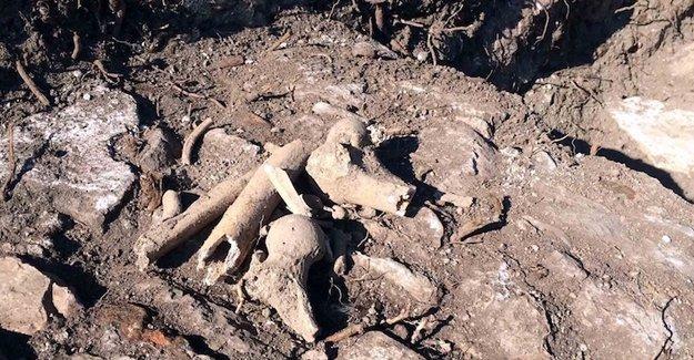 Tarihi Ermeni kilisesinin bahçesinde insan kemikleri bulundu