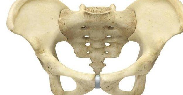 Dişilerde pelvis doğum için nasıl hazırlanıyor?