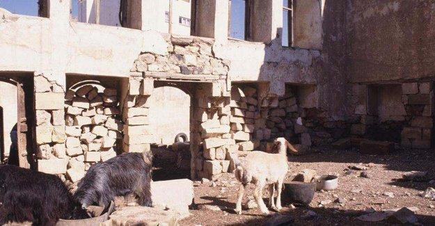 """İçinde keçi otlatılarak """"korunan"""" Kilis sinagogu"""