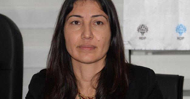 Leyla Birlik, Şırnak'ta 5 gündür yol kenarında bekletilen cenazeyi sordu