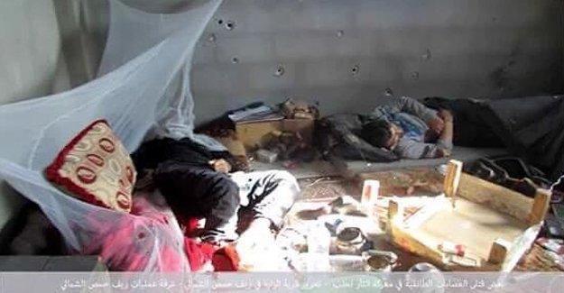 Suriye'de Alevi köyü Zara'da katliam