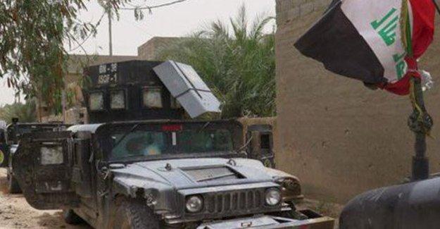 Irak ordusu Felluce'deki hükümet binasının kontrolünü ele geçirdi