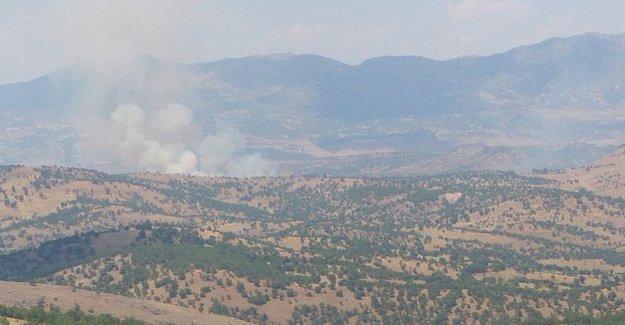 Lice ve Cudi'de orman yangını