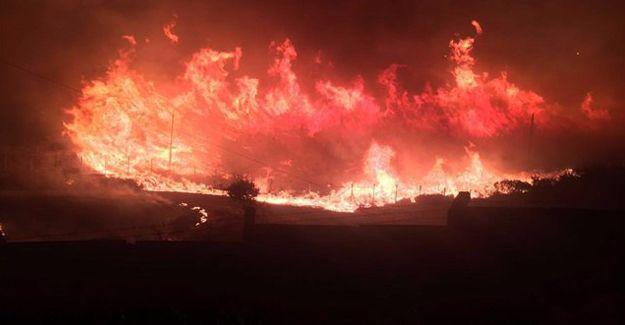 Buca'daki yangın hızla yayılıyor