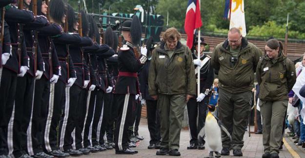 Generalliğe terfi eden penguen, muhafız alayını teftiş etti