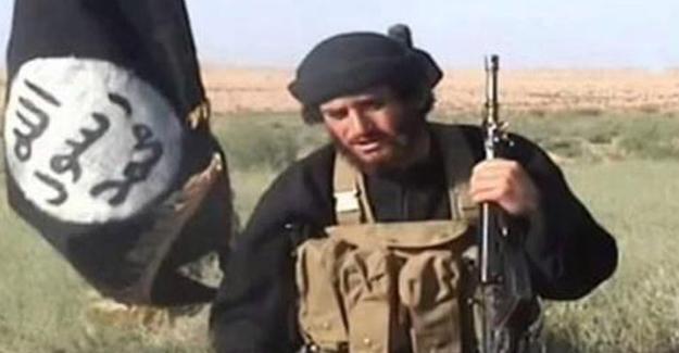 IŞİD sözcüsü El Adnani öldürüldü