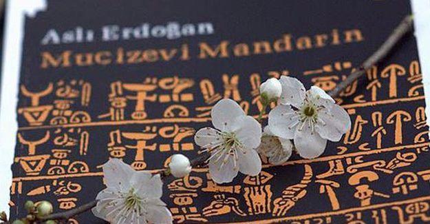 Aslı Erdoğan'ın kitapları yeniden basıldı