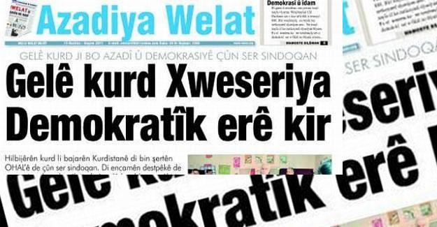 Azadiya Welat muhabiri: Polisler basın kartımı yakıp, bacaklarıma damlattılar