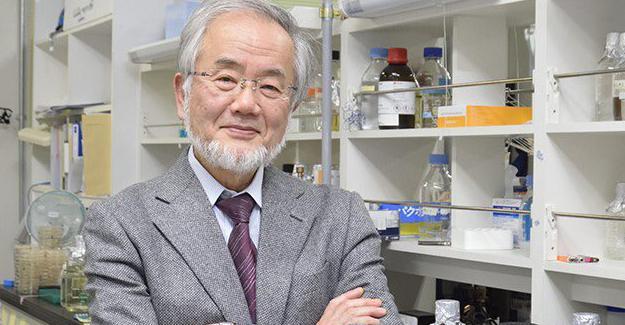 Nobel Tıp Ödülü Ohsumi'ye verildi