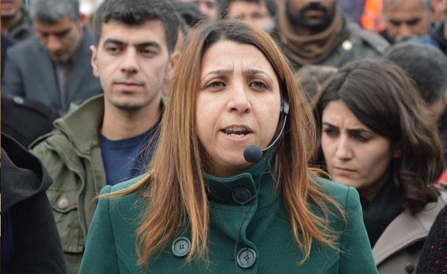 HDP'li İrmez: Haritadan silinmek istenen halka hangi Anayasa meşru gösterilebilir?
