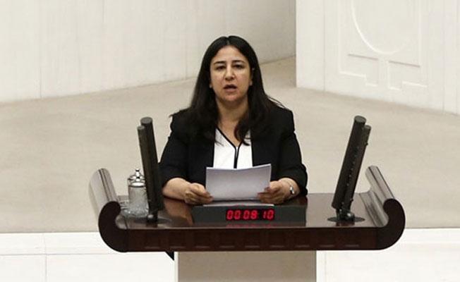 HDP'li Demirel: Nusaybin, Sur ve Cizre'de yaşananların tanığıyız