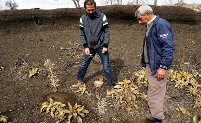 Manisa'daki 26 bin yıllık ayak izleri koruma istiyor