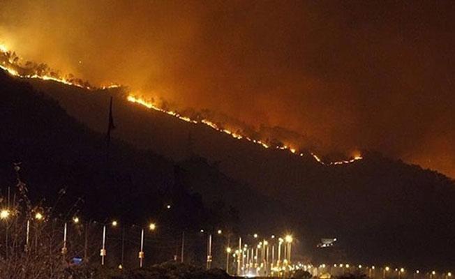 Trabzon Sürmene'de orman yangını