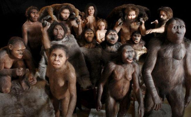 Bilim insanlarından, MEB'e: Evrimsel biyoloji doğa bilimlerinin iskeletidir