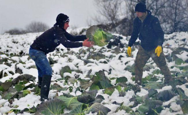 Çiftçilerin borçları Meclis gündemine taşındı